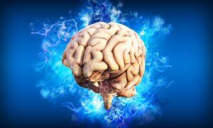 Lucruri fascinante despre creierul uman, explicate de psiholog. De ce ne minte mintea? Cum ni se formează programele, credințele, reacțiile